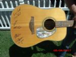 DRIVEN Autographed Edition Guitar